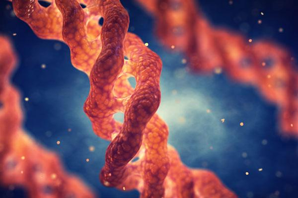 Micro-Dermoxine Complex