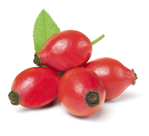Multi Regenerating Rose Hip Oil